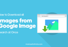Download all Images from Google Image