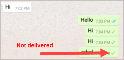 WhatsApp Not Delivered